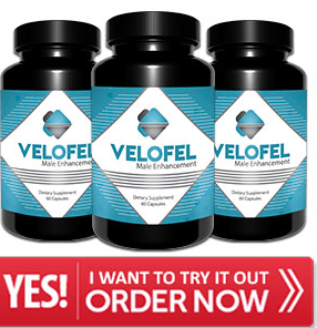 Velofel - featured